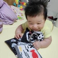 寶寶認知學習布卡開箱體驗