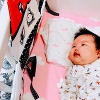 【開箱奇哥】寶寶認知學習布書床圍