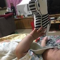寶寶認知學習音樂鈴