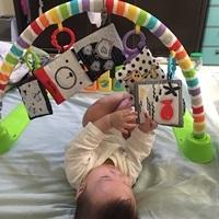 寶寶認知學習布卡